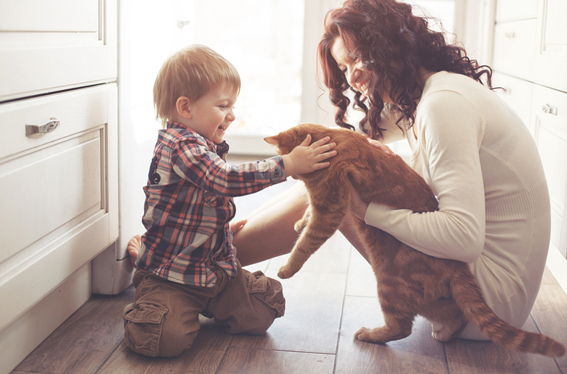 How Pets Can Improve Your Health and Well-Being