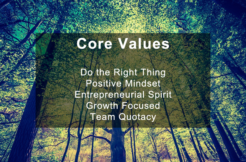 Quotacy's Core Values