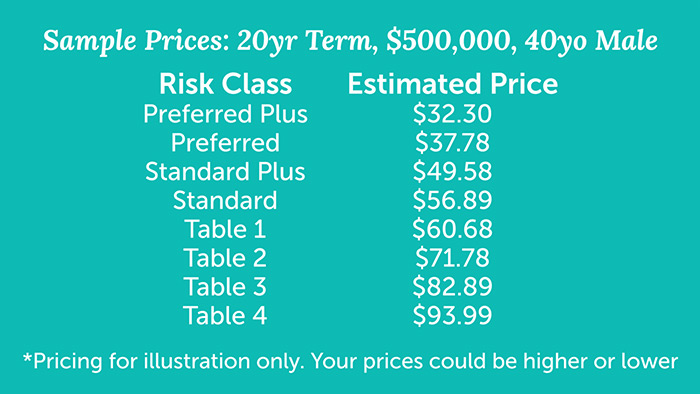 term life insurance policy for 40 year old male based on risk class
