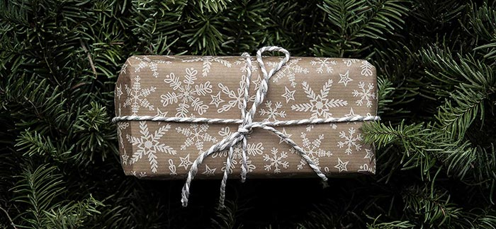 Image of wrapped holiday gift nestled in greenery for Quotacy blog Gift Giving on a Budget.