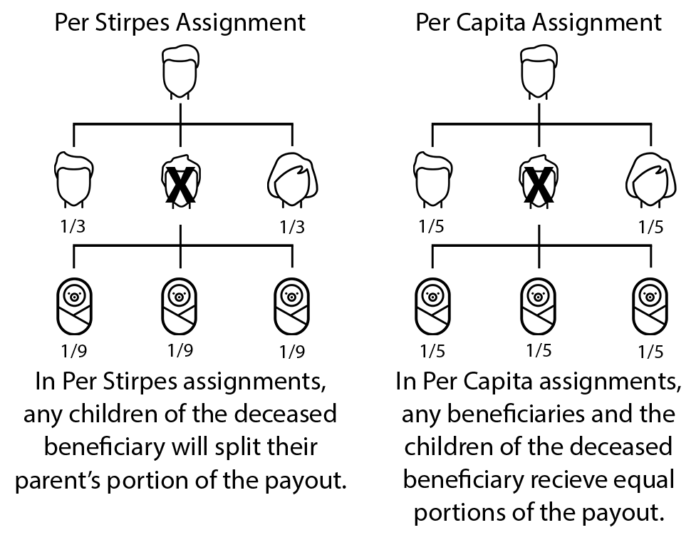 Explaining per capita and per stirpes
