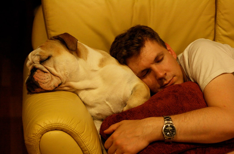Why So Sleepy? The Science Behind the Thanksgiving Nap