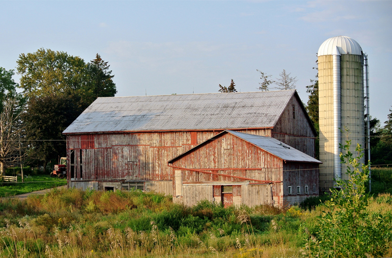 Life Insurance and Estate Planning for Farm Owners