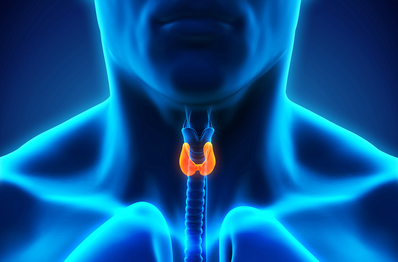 How Do Certain Thyroid Conditions Affect Buying Life Insurance?
