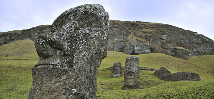 Image of Moai statues on Easter Island close up of statue's nose for Quotacy blog Allergies and Life Insurance.