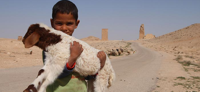 image of a young boy holding a goat in his arms on the side of a desert road for Quotacy blog Helping End World Hunger.