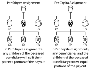 Infographic: Per Stirpes vs. Per Capita Assignment for Quotacy blog: Naming Multiple Life Insurance Policy Beneficiaries.