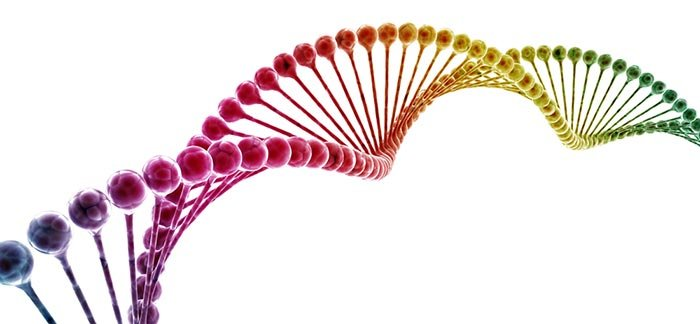 Image of DNA sequence for Quotacy blog: How does genetic testing affect term life insurance rates?