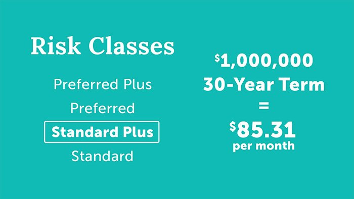 life insurance risk classes