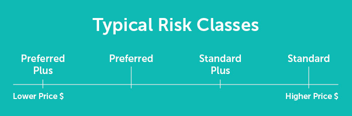 Slide describing typical risk classes for term life insurance.