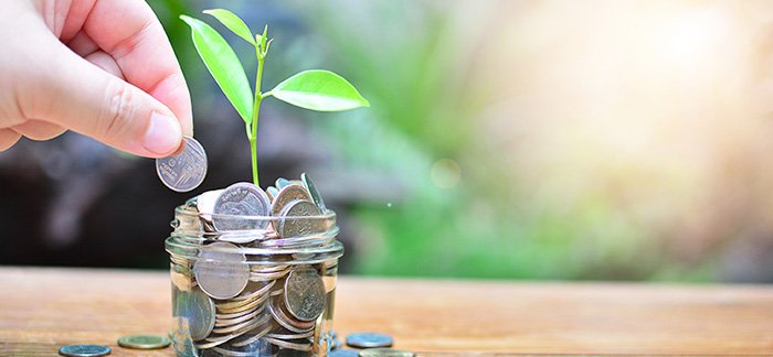 Hand planting coins to grow as an investment