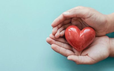 What to Know About Being an Organ Donor